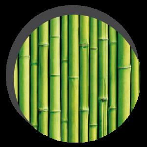 photo de bambou les uns à coté des autres de manière verticale